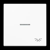 Tecla con VISOR y símbolo LUZ Jung LS990