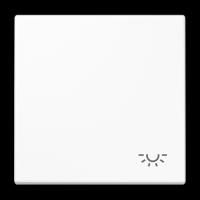 Tecla símbolo LUZ Jung LS990