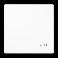Tecla símbolo PUERTA Jung LS990