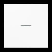Tecla Simple con Visor Jung LS990